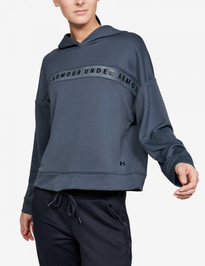 Mikina Under Armour Tech Terry Hoody-Gry